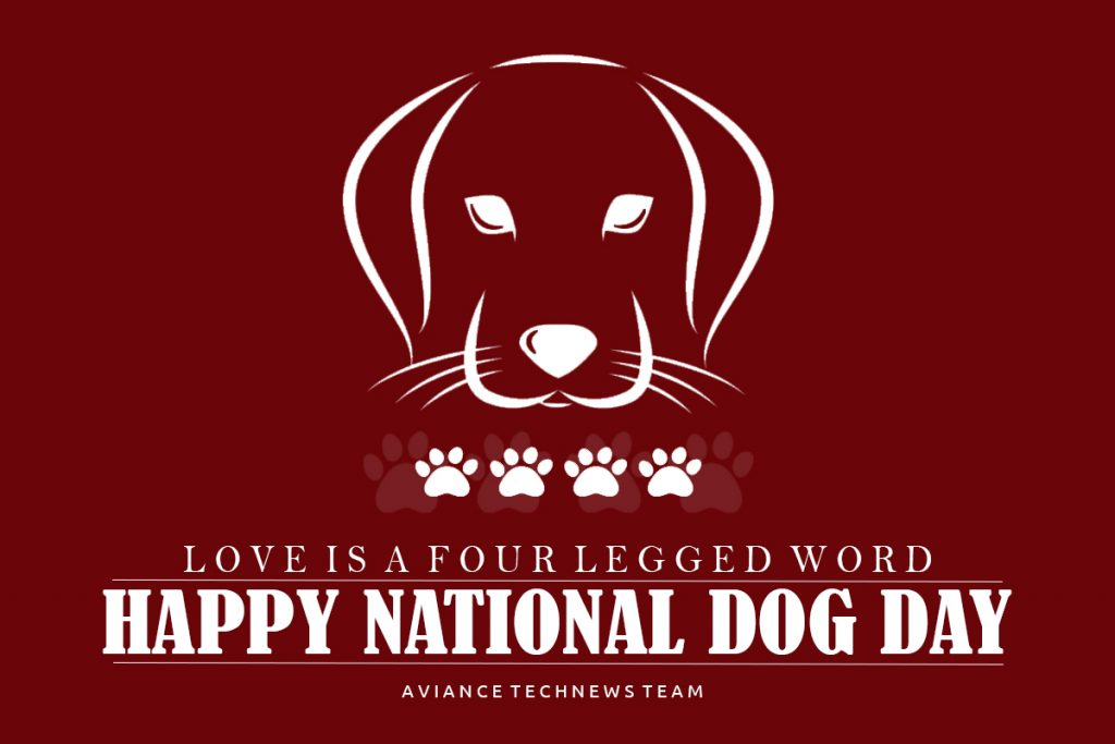 national-dog-day-2020-history-and-ways-to-celebrate