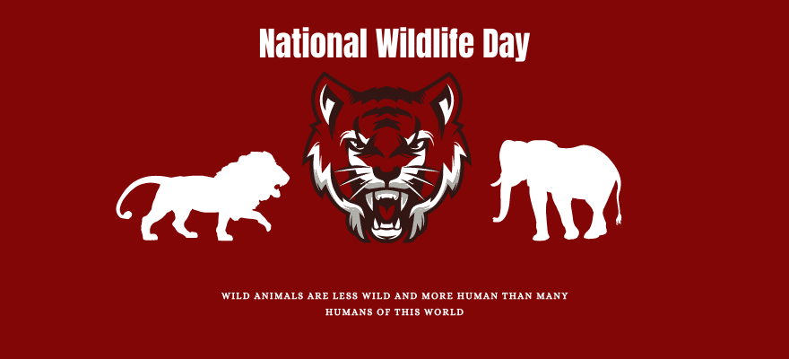 national-wildlife-day
